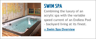 Swim Spa Overview